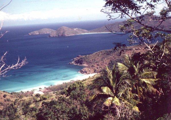 Tortola.jpg